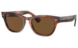 Polarizační Sluneční brýle Ray Ban LARAMIE 2201 954/57