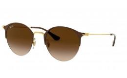 Polarizační Sluneční brýle Ray Ban Round RB 3578 900913